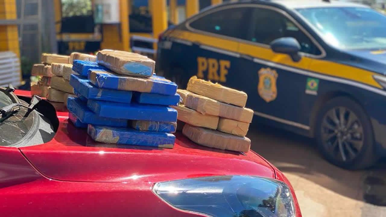 Droga apreendida pela Polícia Rodoviária Federal