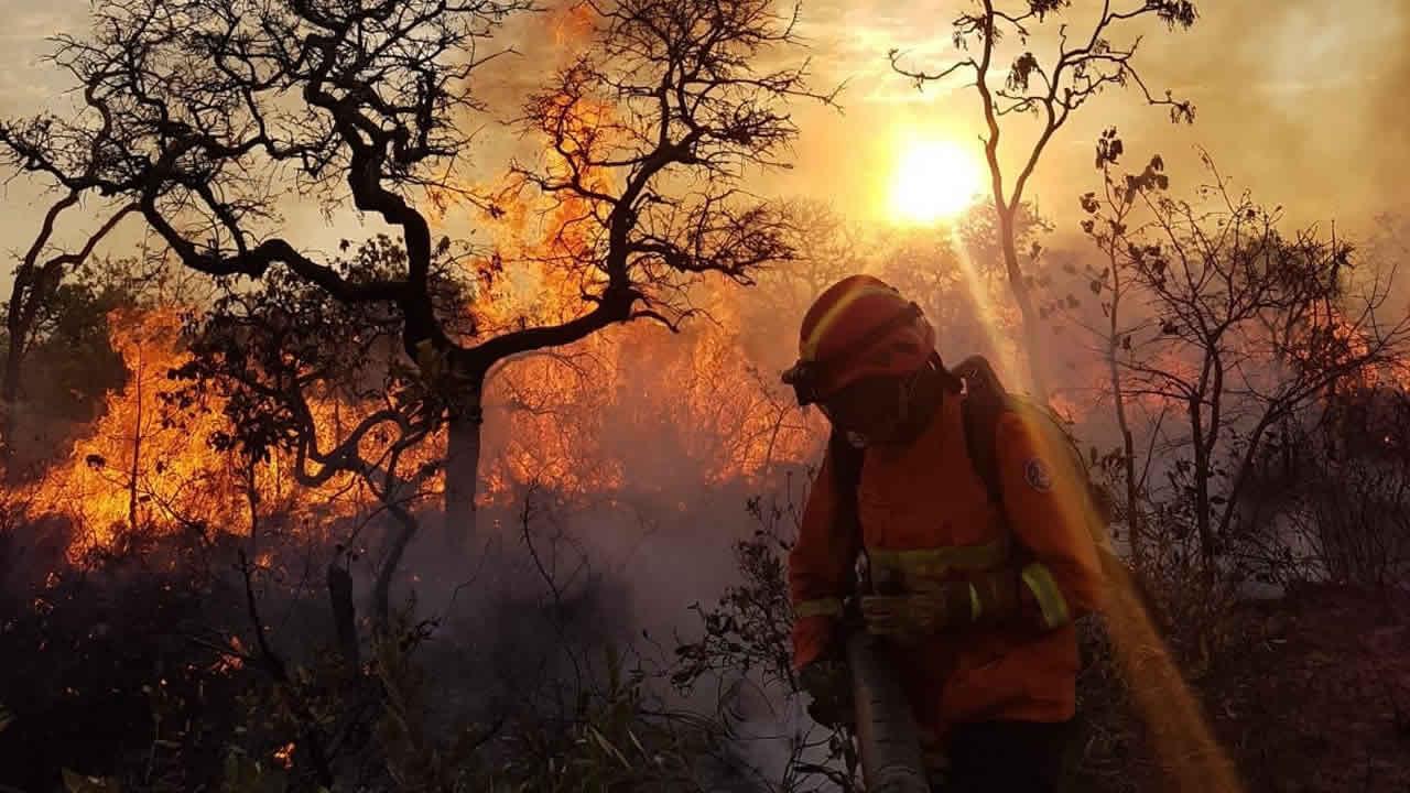 Cerca de 300 hectares de vegetação da Serra de Brasilândia de Minas foram devastados pelo fogo, diz secretário