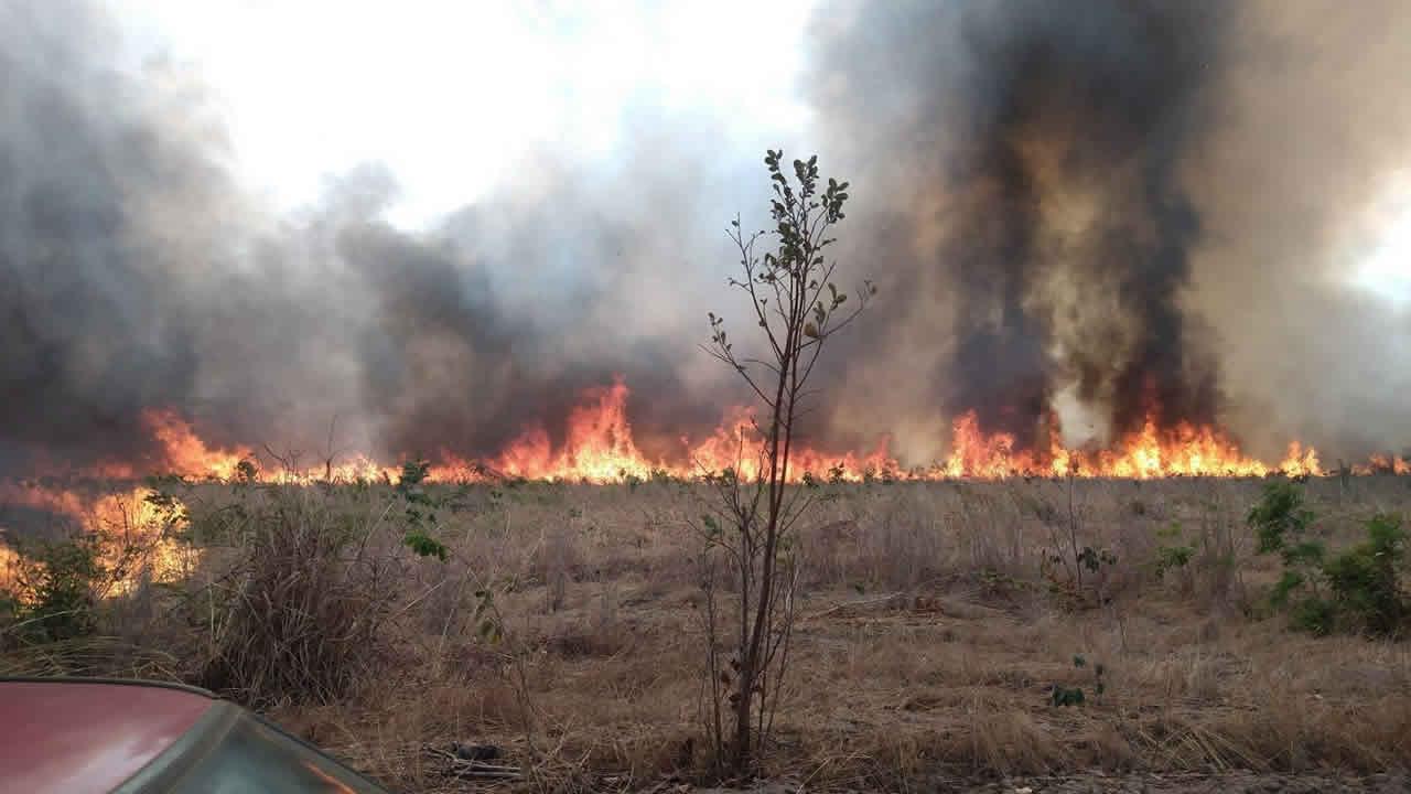 91 hectares de vegetação são destruídos em incêndio próximo ao distrito de Canabrava em João Pinheiro